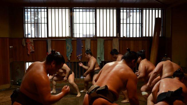Menonton latihan pagi atlet sumo di Shitamachi. (jw-webmagazine.com)
