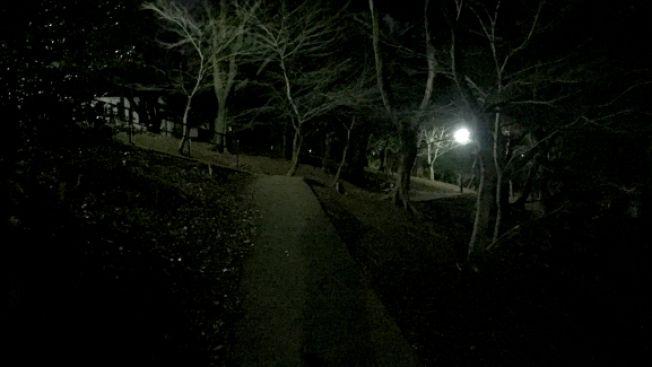 Toyama Park Berita Jepang terkini japanesestation.com