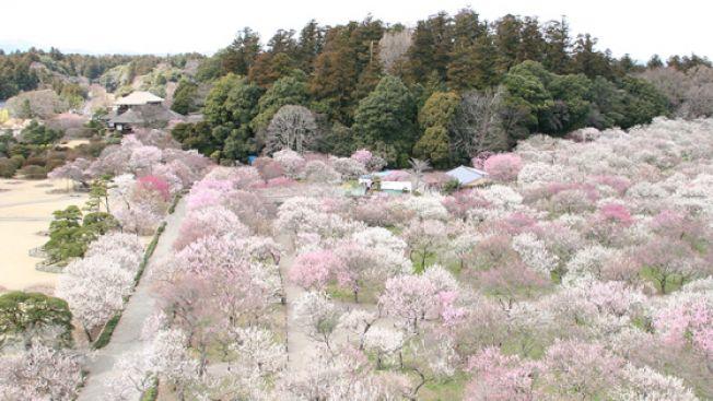 Taman Kairakuen