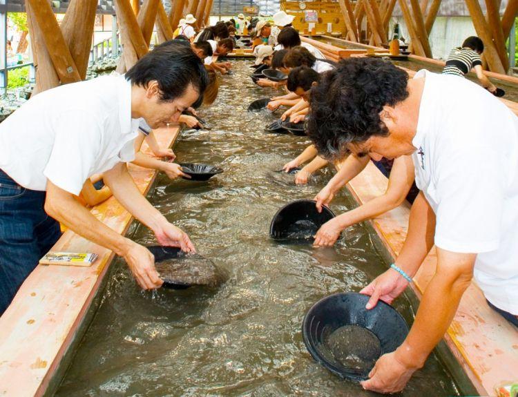 Taio-Kinzan Gold Mine Museum (discover-oita.com)