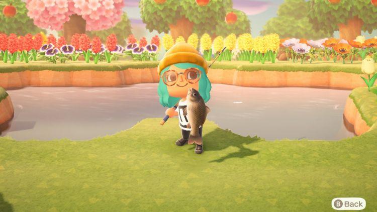 Menangkap ikan di Animal Crossing: New Horizons (wired.com)