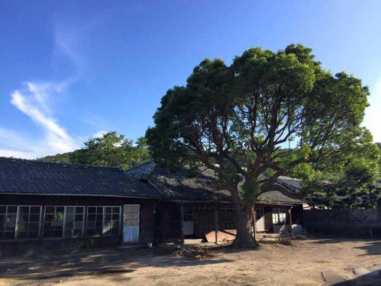 Mizumiiro Elementary School (japanvisitor.com)
