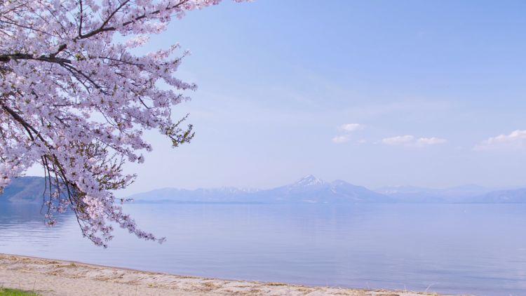 Lake Inawashiro pada musim semi (inawashiroko.jp)