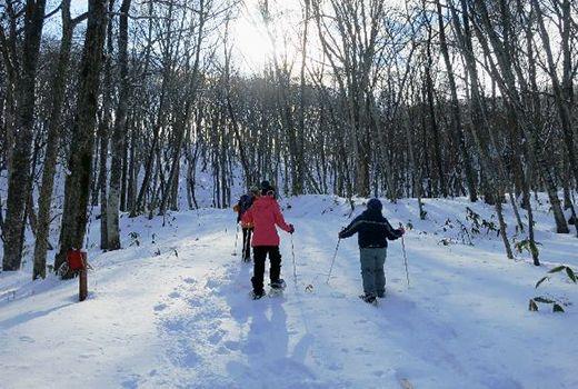 Bermain salju di Gunung Hakodate (hakodate.travel)