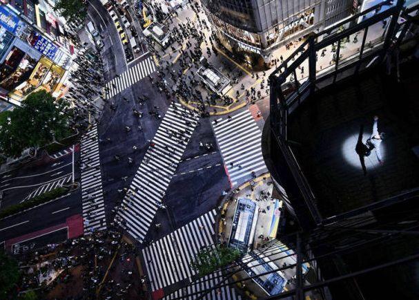 Shibuya pemandangan malam japanesestation.com