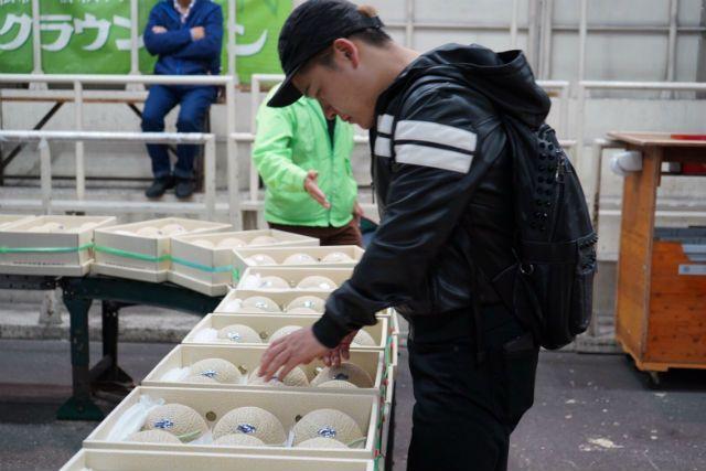 Melon memiliki harga yang mahal di Jepang