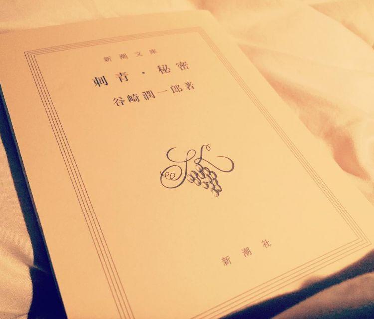 Novel Shisei