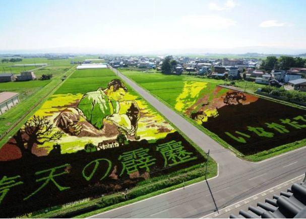 seni ladang padi japanesestation.com