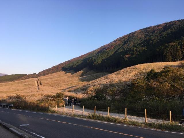 tanda musim gugur di Jepang susuki japanesestation.com