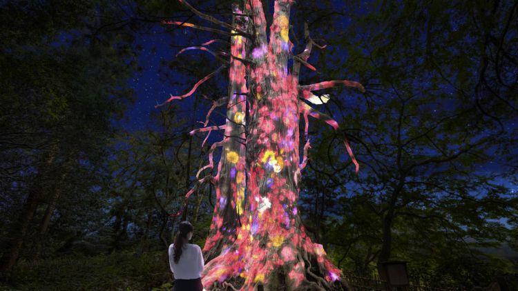 teamLab Digitized Kairakuen Garden