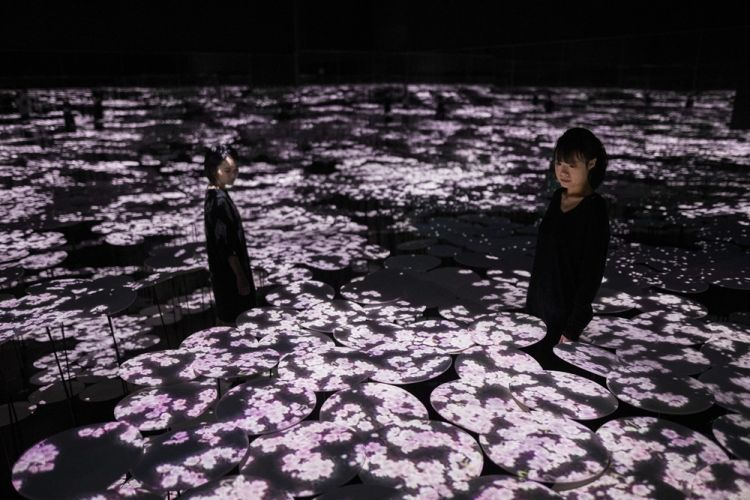 teamLab, 'Memory of Topography'