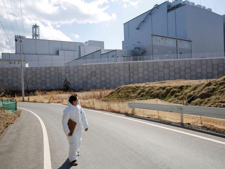 bencana nuklir fukushima kucing japanesestation.com
