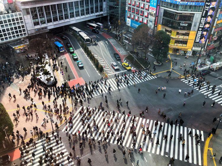 fakta tentang hachiko shibuya crossing japanesestation.com