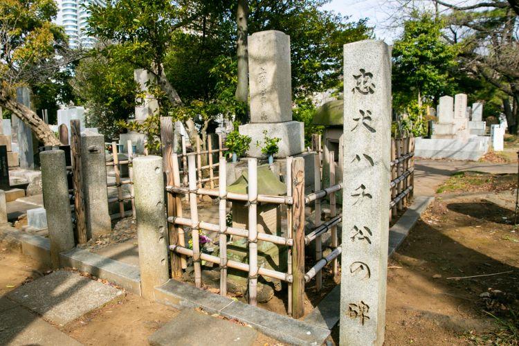 fakta tentang hachiko akita inu japanesestation.com